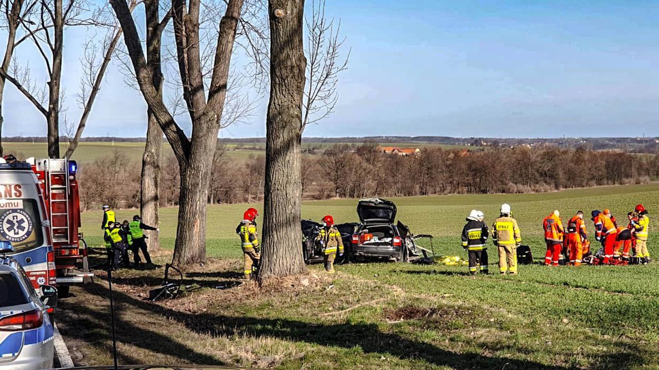 Wracali z urodzin kolegi, ich samochód uderzył w drzewo. Czterej 19-latkowie nie żyją