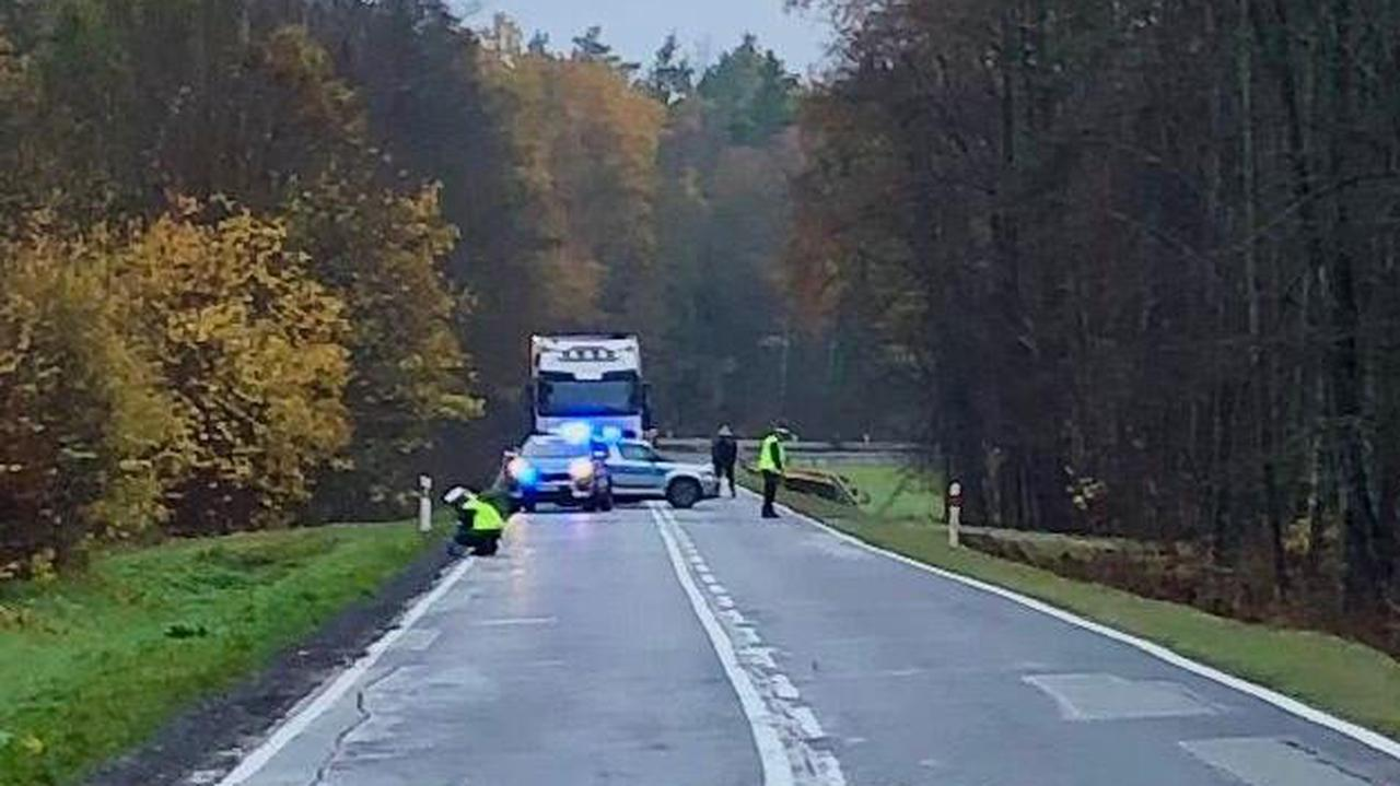 Zwłoki mężczyzny w rowie, podejrzany o potrącenie kierowca trafił do aresztu