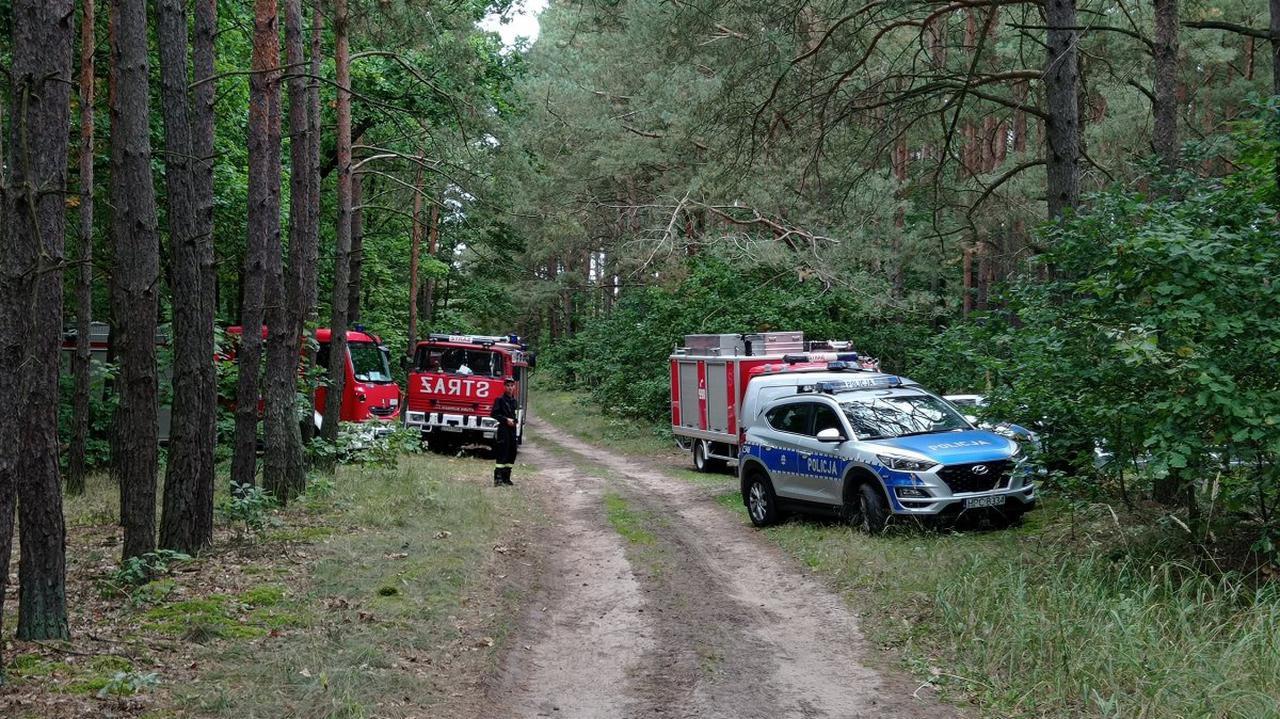 74 policjantów i strażaków szukało grzybiarza. Gdy służby przeczesywały las, zaginiony wrócił do domu