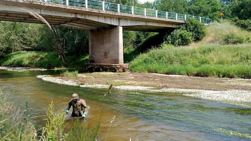 Pociski artyleryjskie znalezione na dnie rzeki Kwisa w trakcie spływu pontonowego