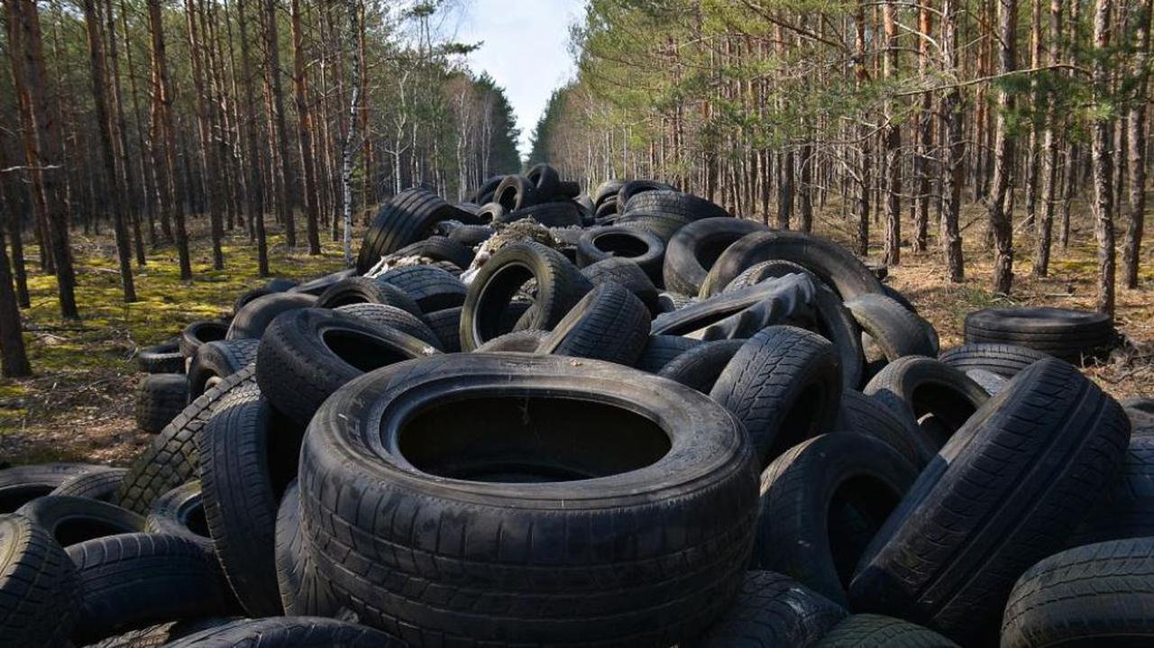 Sterta opon w środku lasu. Leśnicy wystawili już rachunek, szukają właściciela, by mu go wręczyć