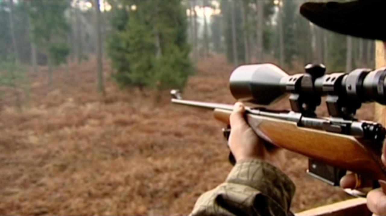 Myśliwy podczas polowania postrzelił 14-latka