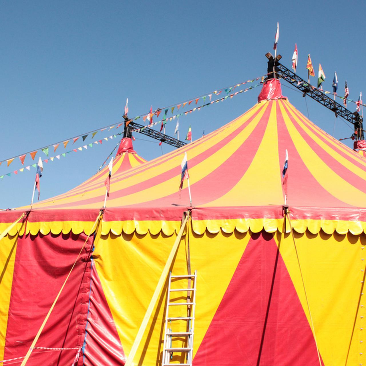 Dolny Śląsk: wypadek w cyrku. Pod widzami zapadły się ławki