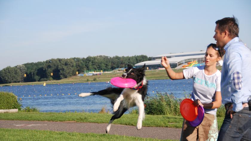 Latające dziewczyny z Poznania. Łapią frisbee i zbierają na lot do USA