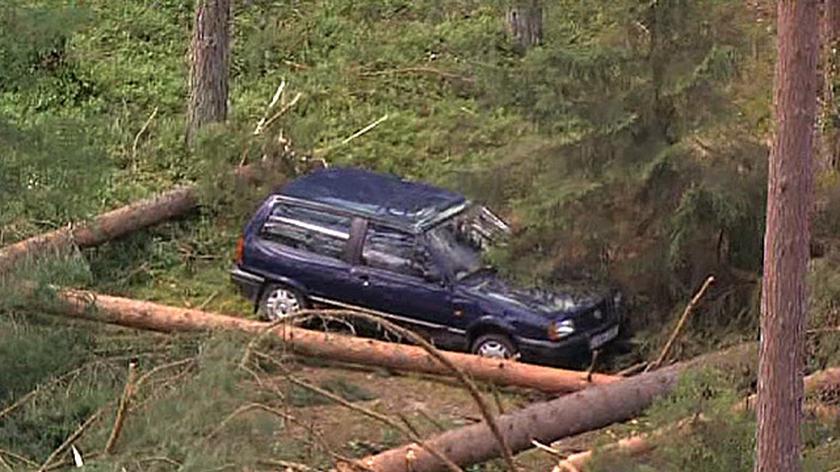Właściciel porzucił auto w lesie