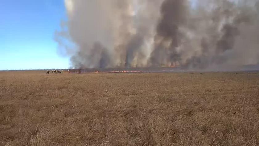 Strażacy pokazują jak wygląda sytuacja w Biebrzańskim Parku Narodowym