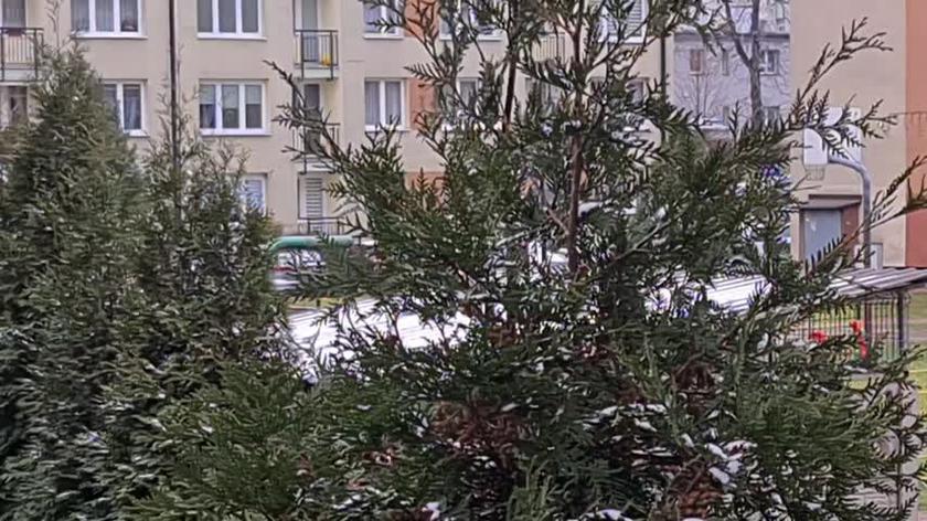 Chorzów Pada Śnieg