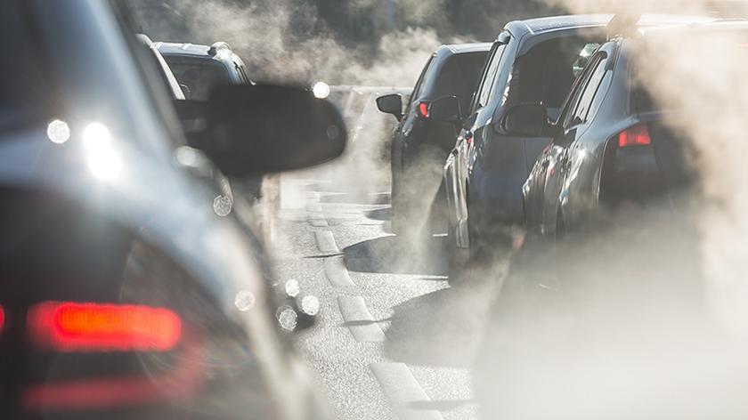 Rozmowa o smogu z Katarzyną Guzek z Greenpeace