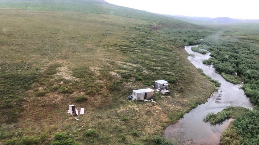 Niedźwiedź przez tydzień atakował mężczyznę na Alasce