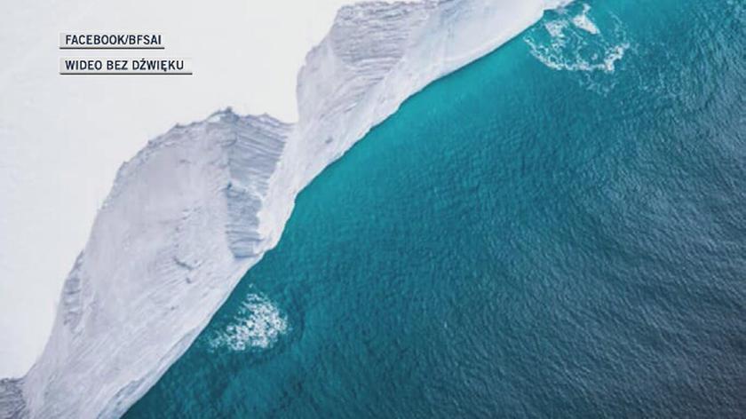 Góra lodowa A68a w grudniu 2020 roku zagrażała Georgii Południowej