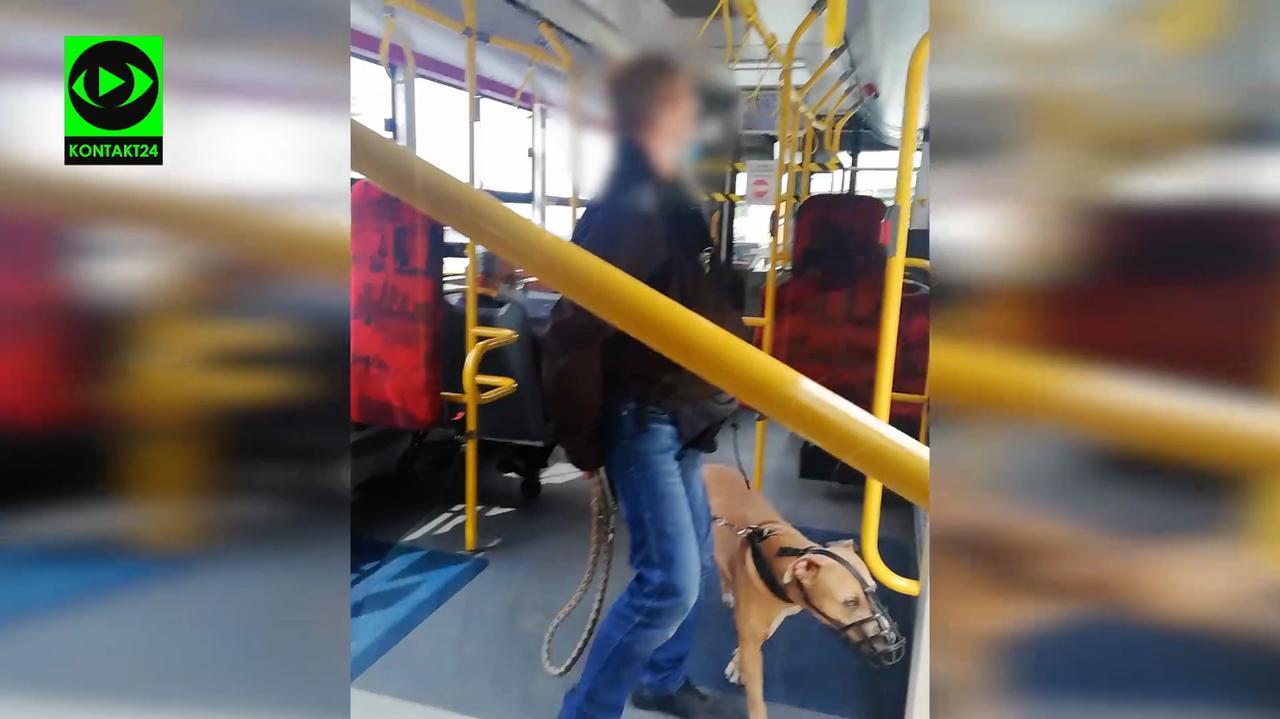Kopał autobus i ubliżał kierowcy, bo ten zwrócił mu uwagę