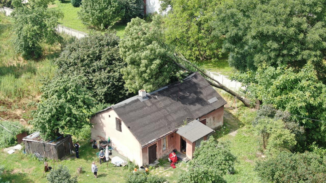 Drzewo przewróciło się na dom jednorodzinny