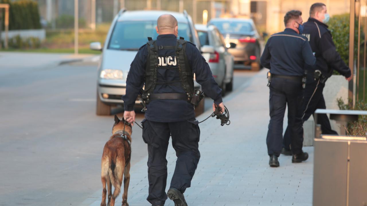 Policjanci z psem tropiącym na Mokotowie.