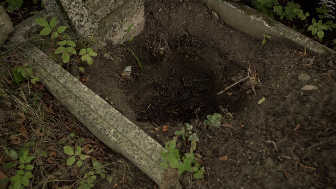 Rozkopany dziecięcy grób na poniemieckim cmentarzu.