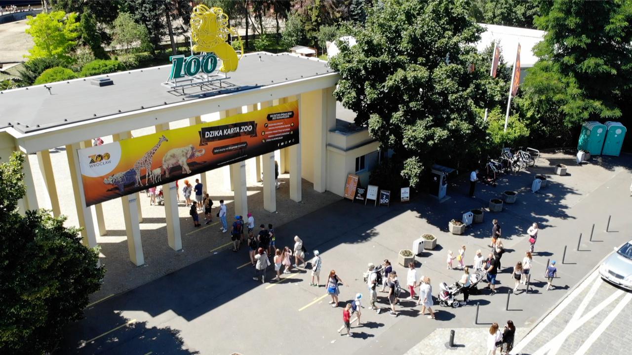 Tłumy we wrocławskim zoo. Dyrektor: za egzekwowanie obostrzeń niektórzy grożą nam sądem